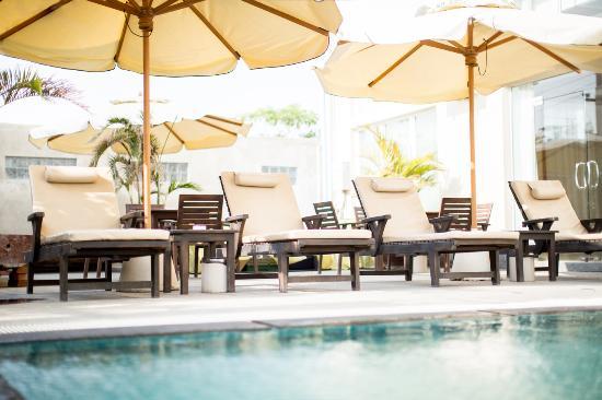 73ea5-hotel-hazel.-Swimming-Pooljpg.jpg