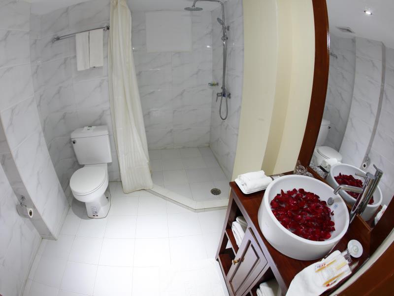 741a8-oway-grand-hotel-mdl-shower.jpg